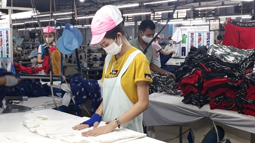 BHXH tỉnh Bình Thuận khẩn trương hỗ trợ người lao động, người sử dụng lao động gặp khó khăn do dịch COVID-19