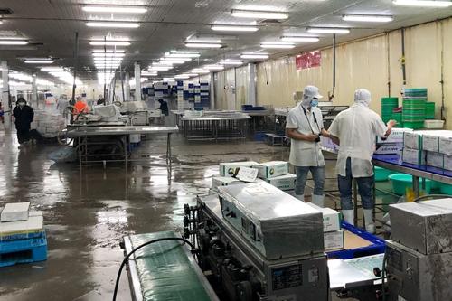 Xem xét lại tư duy vùng trong sản xuất, kết nối, tiêu thụ nông sản
