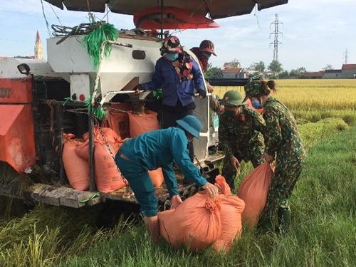 Thắm tình quân dân trên đồng quê xứ Nghệ