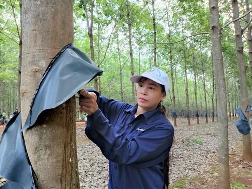Nữ công nhân yêu nghề, tận tụy trên đất rừng biên giới