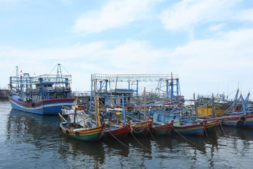 """Nhiều """"vùng xanh"""" của Bà Rịa- Vũng Tàu lên kế hoạch để ngư dân hoạt động trở lại"""