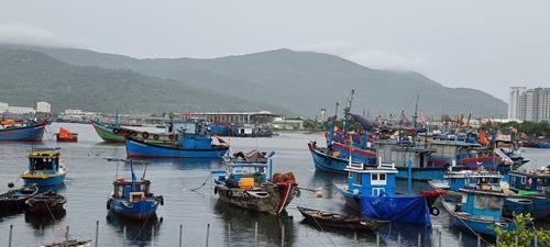 Quảng Nam, Đà Nẵng cấm tàu thuyền ra khơi