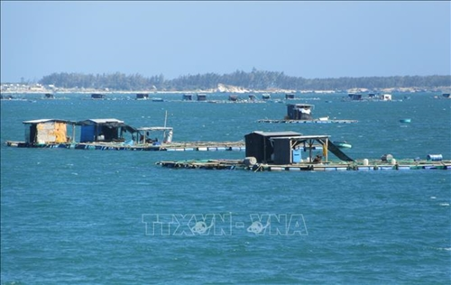 Làm rõ về quy định cho thuê khu vực biển để nuôi trồng thủy sản