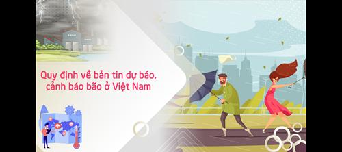 [Infographic] Quy định về bản tin dự báo, cảnh báo bão ở Việt Nam