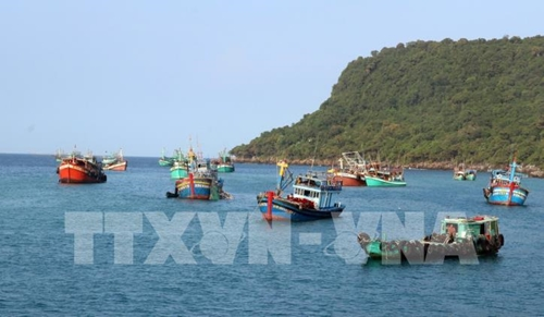Thực hiện Đề án hợp tác quốc tế về phát triển bền vững kinh tế biển