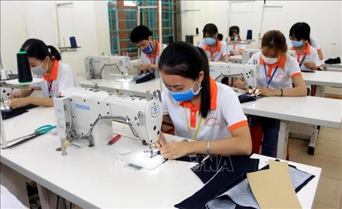 Thái Bình Đào tạo nguồn nhân lực gắn với nhu cầu xã hội