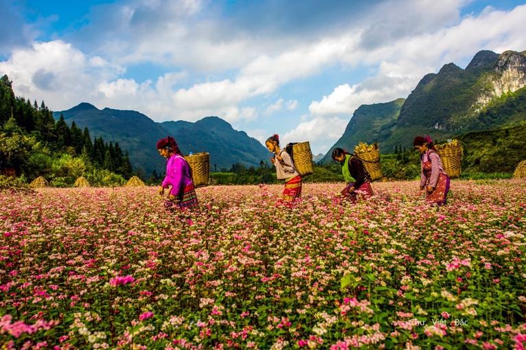Hà Giang phấn đấu đưa du lịch trở thành ngành kinh tế trọng điểm