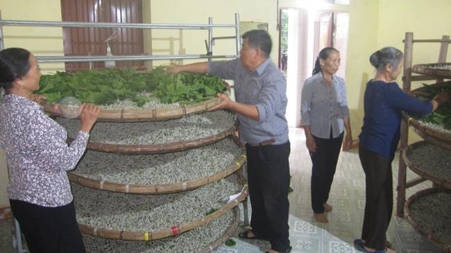 Thái Bình tăng cường quản lý, khai thác hiệu quả tiềm năng