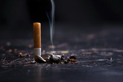 Mỗi năm, thuốc lá khiến hơn 8 triệu người tử vong trên thế giới