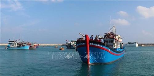 Услуги логистики для рыболовства на островах Чыонгша