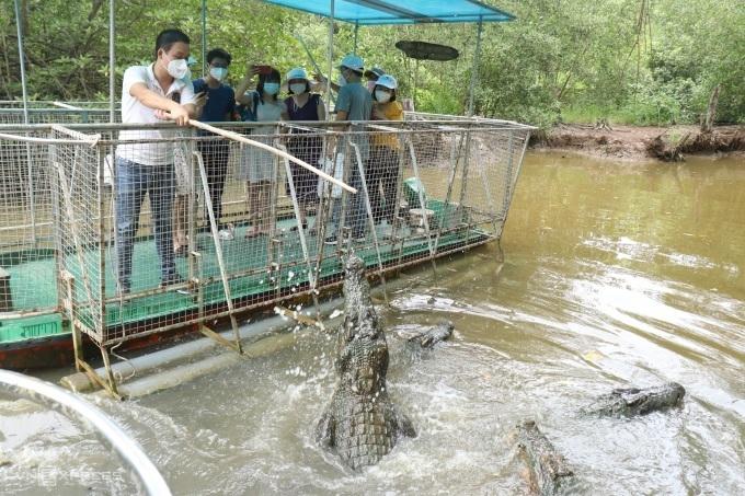 Город Хошимин вновь откроет межпровинциальный туризм с ноября