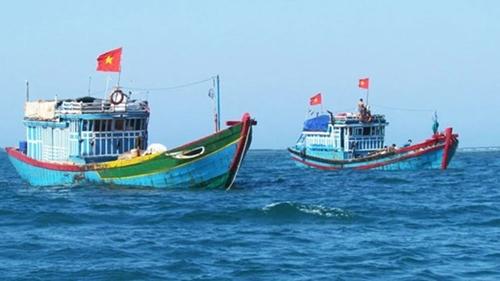 Provincia de Ben Tre se empeña en luchar contra la pesca ilegal