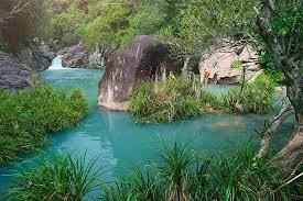 Dos lugares vietnamitas aguardan la votación sobre el estatus de reserva de la biosfera de la UNESCO