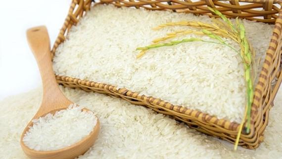 La exportación de arroz en 2021 alcanza su objetivo